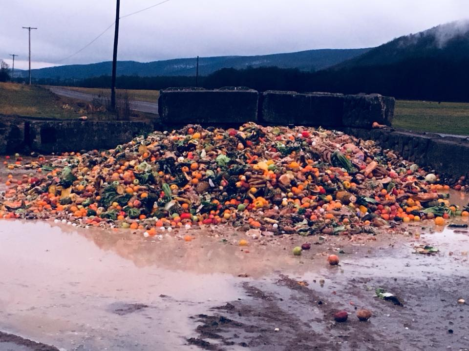 A delivery of food waste at Barbland Dairy.
